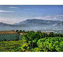 Vineyard in Monte Cassino Photographic Print