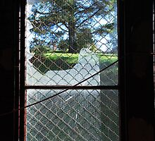 broken window by Clare McClelland