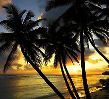 Sunset Glow - Cocos (Keeling) Islands by Karen Willshaw