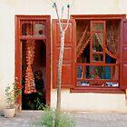Windows and Doors by snefne