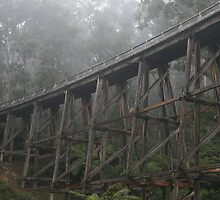 Noojee Trestle Bridge, Victoria by Redneck