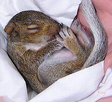 Snuggle Baby by Kay Kempton Raade