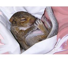 Snuggle Baby Photographic Print