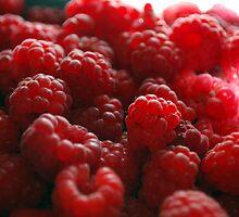 red raspberry  by Michelle BarlondSmith