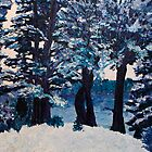 WInter Lakeside Trees by Bill Patten