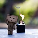 run danbo run! by juiciness