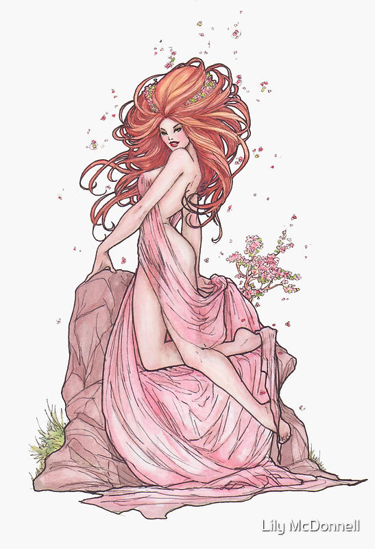 Cherry Blossom by Lily McDonnell