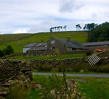 Dales Farm by Trevor Kersley