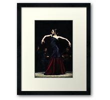 Encantado por Flamenco Framed Print