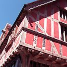 Old Pink House by Lynn Ede