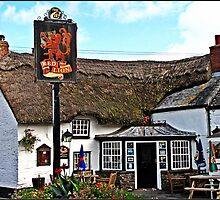 """""""Old Cornish Pubs"""" by Malcolm Chant"""