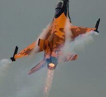 Dutch Display F16  by wafu207