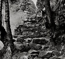 Steps of stone,Nepal Himalayas. by Neil Bussey