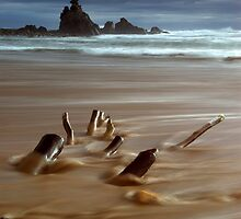 Sailors Grave,Coromandel by Paul Mercer