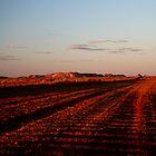 Painted Desert at Sunset near Oodnadatta S.A. by Jeff Barnard