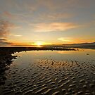 Sunrise over Golden Bay, New Zealand by SusanAdey