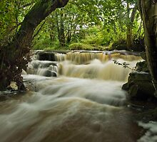 Earby Waterfall by Steve  Liptrot