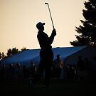 Tiger's Silhouette by Trenton Purdy