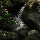 Waterfall with Pink Flowers at El Yunque (dark) by Matt Ravick