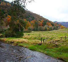 Glendalough by Chuck Zacharias