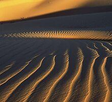 Dunes by Jean-Baptiste Guyot