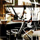 Idiosyncratic by Ronald Eller