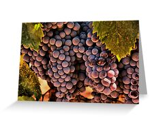 Vinyard Still Life Greeting Card