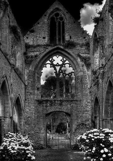 Abbaye de Beauport, Paimpol, Cotes-d'Armor, Brittany, France by Bob Culshaw