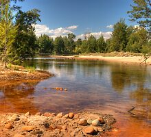 Shallow Water by Terry Everson