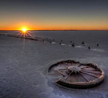 Barren Sunset • Lake Hart • South Australia  by William Bullimore