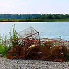 Rusted Crab Pots by Hope Ledebur