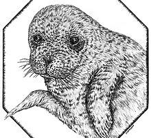 Seal Pup by artbyjehf