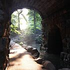 Central Park alleyway by dannytheniceguy
