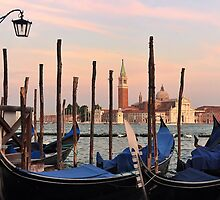 Gondolas at St. Mark's Square by Mitchell Grosky