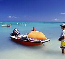 Landscape Aruba  by Peter  Downing