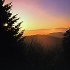 SUNRISE,CLINGMANS DOME by Chuck Wickham