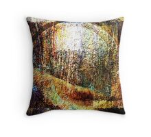 ancient surfaces... first phase Throw Pillow