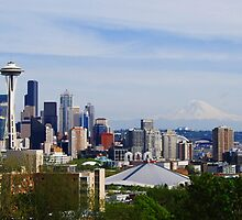 Seattle Panoramic by Tori Snow