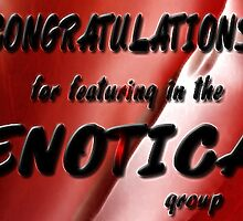 Congratulations Banner 4 the ENOTICA group (challenge) by alaskaman53