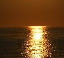 golden seas by Amanda320