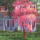 Weeping Cherry by the Veranda by Susan Savad