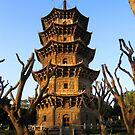 Zhenguo Pagoda - Kaiyuan Temple - Quanzhou, China by John Meckley