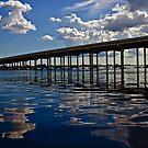 Charlotte Harbor by LudaNayvelt