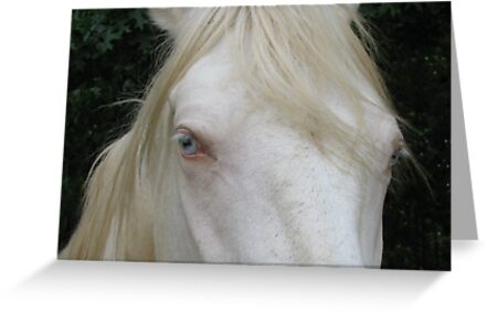 Pretty Blue Eyes by Ginny York