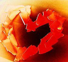 paper heart by vampvamp