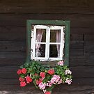 Old Farmhouse Window by Christine Wilson