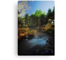 Kerosine creek thermal stream, Rotorua Canvas Print