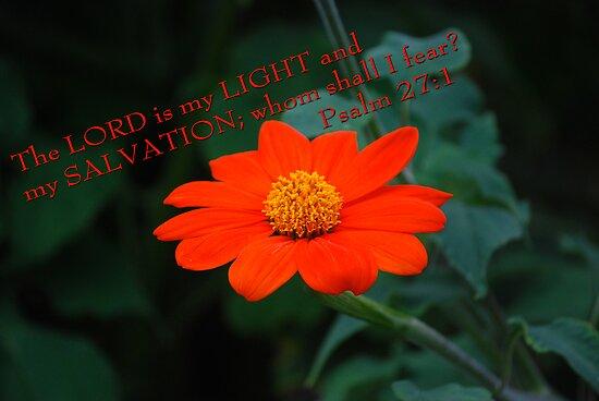 My Favorite Psalm... by Carol Clifford