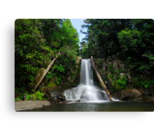 Waiau falls Coromandel Canvas Print