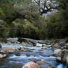 Cledau River,Fiordland National Park by Paul Mercer